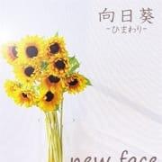 「♡新人情報♡」10/26(火) 14:27   向日葵-ひまわり-のお得なニュース