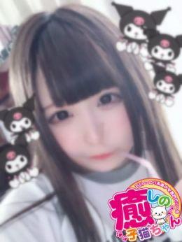 はる | 癒しの子猫ちゃん - 小松・加賀風俗