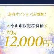 「☆ 小山市限定超特価☆」12/08(日) 22:30 | デリとちのお得なニュース