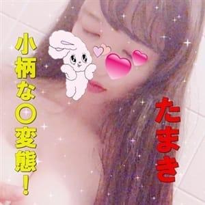たまき | 激カワ素人娘御奉仕倶楽部 名古屋店 - 名古屋風俗