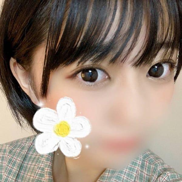 「ありがとう☀️☀️」05/18(火) 01:58 | しの【清楚系超Hな19歳♡】の写メ