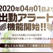 「ゲリラ対応出勤アラート機能!!!」05/18(月) 23:14 | aroma ace.のお得なニュース
