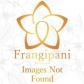 Frangipani-フランジパニ-の速報写真