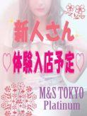 ★体験入店予定★|M&S Tokyo platinumでおすすめの女の子