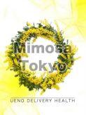 なつき|Mimosa Tokyoでおすすめの女の子