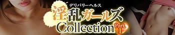 淫乱ガールズCollection Ⅰ