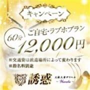 ★限定キャンペーンプラン★|大阪人妻デリヘル 誘惑
