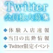☆★Twitter会員様特典★☆★|TAMANEGI京橋店(タマネギ)