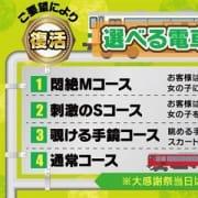 「9月イベント♪選べる電車コース&魅惑のバニー姿」09/24(金) 23:00 | GO!GO! 堺東店のお得なニュース