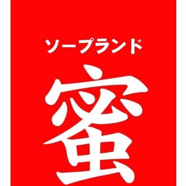 椿 しほ【超H・超癒し系】