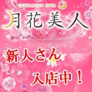 明菜アキナ(20代料金【黒髪清楚な癒し系娘】   月花美人(大分市近郊)