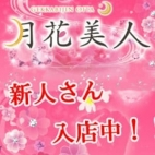 明菜アキナ(20代料金