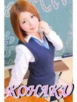 KOHAKU   and can can(アンドキャンキャン) - 長崎市近郊風俗