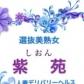 紫苑の速報写真