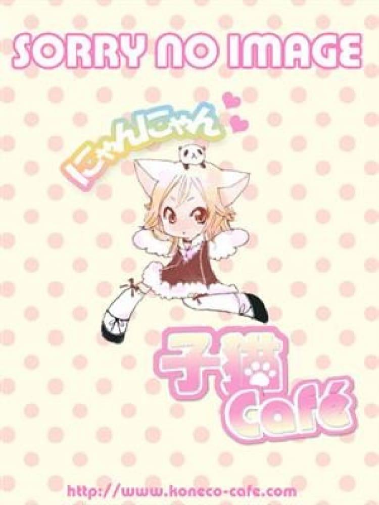ぐり(子猫カフェ)のプロフ写真8枚目