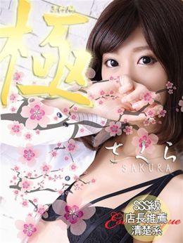 桜   エステティーク谷九店 - 谷九風俗