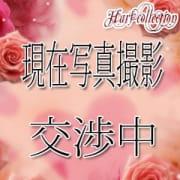 ハーフ&クウォーター専門店 ハーフコレクションのクーポン写真