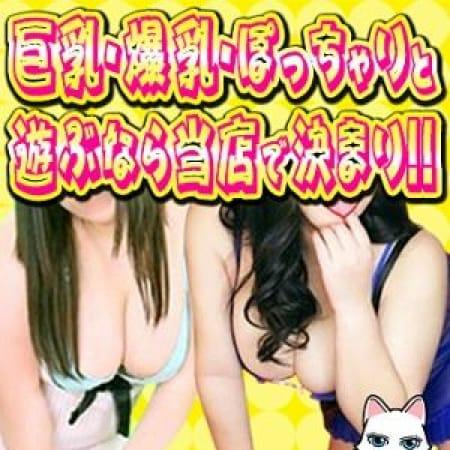 「フリー限定「おまかせ割り」」02/23(金) 11:33 | PukuPuku白うさぎのお得なニュース