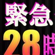 「深夜もお得料金で★」02/06(水) 02:27 | 即尺・アナル舐めデリバリーヘルス ワイフドアのお得なニュース