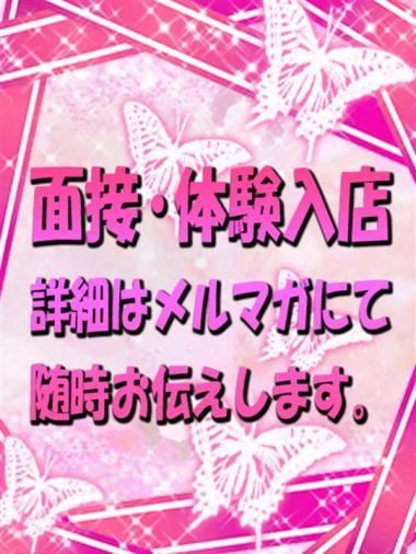 面接体験入店★3|ウルトラGユニット - 五反田風俗