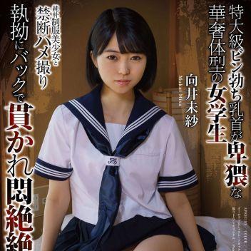 【AV女優】向井未紗   TSUBAKIグループ - 福山風俗