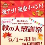 「絶対お得な奥様松茸ツアー」09/26(水) 00:00 | 隣の奥様 四日市本店のお得なニュース