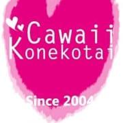 「☆極上の体験子猫のご紹介☆」06/19(火) 11:37 | Cawaii Konekotaiのお得なニュース