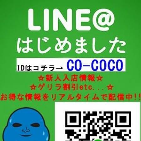 「LINE@会員様募集中です♪」01/23(火) 23:01 | COCOのお得なニュース