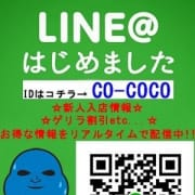 「LINE@会員様募集中です♪」03/18(日) 12:00 | COCOのお得なニュース