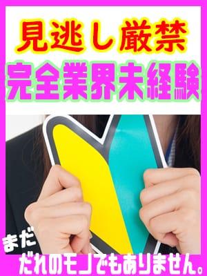 ひかり|T-BACKS てぃ~ばっくす - 千葉市内・栄町風俗