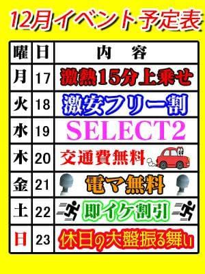12月のイベントスケジュール|T-BACKS てぃ~ばっくす-千葉市内・栄町デリヘル