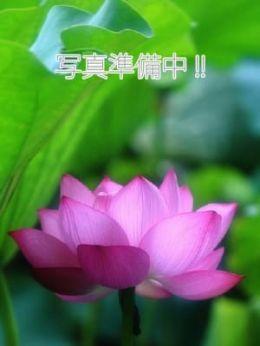 葉月 | アジアンビーナス - 熊谷風俗