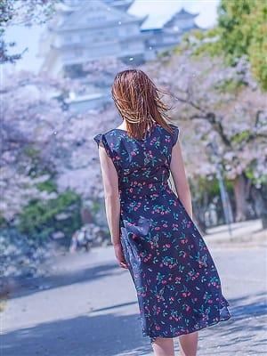 咲麗(さくら)(ミセスカサブランカ姫路店(カサブランカグループ))のプロフ写真4枚目