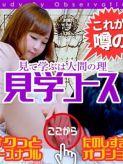 ☆見学コース☆|やってみます!!姫路デリバリーヘルスT&Mです!!でおすすめの女の子
