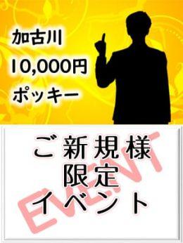 ご新規様限定イベント | 加古川10,000円ポッキー - 加古川風俗