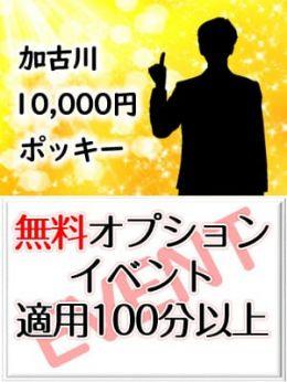 無料オプションイベント | 加古川10,000円ポッキー - 加古川風俗