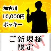「【ご新規様限定イベント】」 | 加古川10,000円ポッキーのお得なニュース