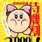 「※「今すぐの子」が「一番オトク」な割引です!!」07/12(日) 17:06 | ギャルズネットワーク姫路のお得なニュース