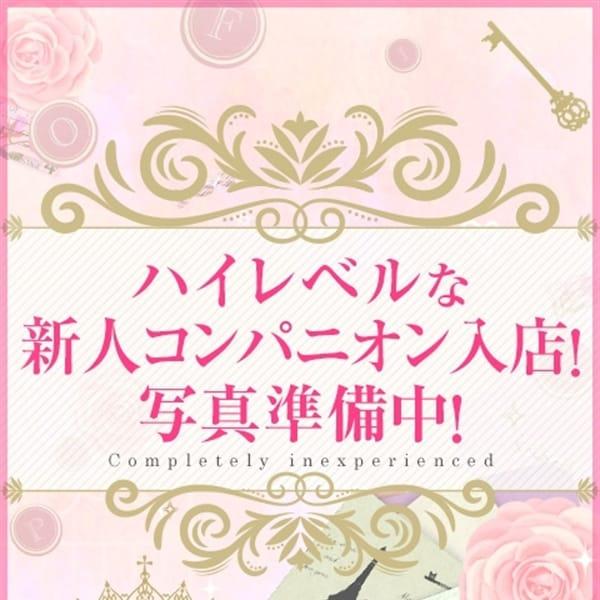 初恋-Hatsukoi-
