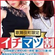 「≪歌舞伎町限定!イチマツ割≫」02/24(日) 11:25   麗しい人妻 新宿本店のお得なニュース