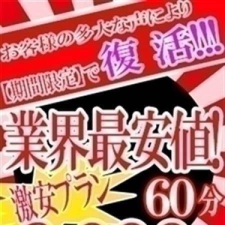 「☆★☆ 各プランのご説明 ☆★☆」05/09(水) 15:02 | 博多好いとーとのお得なニュース