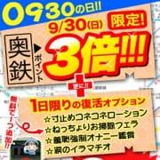 「毎年恒例!奥様の日イベント!!」09/23(日) 16:21   奥様鉄道69 神奈川店のお得なニュース