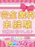 あむ|新横浜アンジェリーク(アンジェリークグループ)でおすすめの女の子