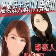「*☆* 新人奥様続々入店中~♪*☆*」04/25(水) 19:18   華恋人~カレントのお得なニュース