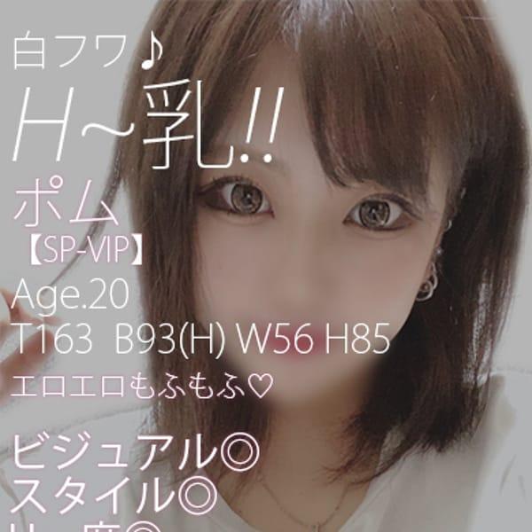 ポム【SP-VIP】【神推し確定♪】 | 英乃國屋(松山)