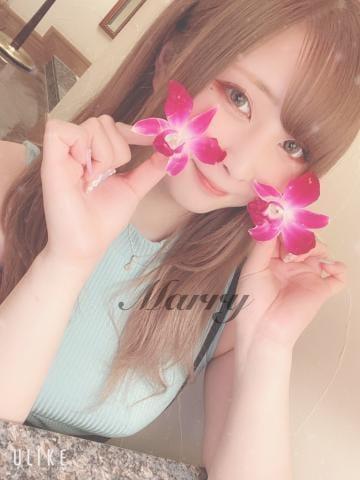 マリー【博多の顔とも言える極嬢】|福岡市・博多風俗の最新写メ日記