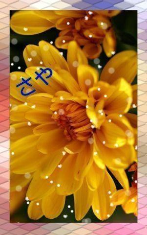 「花〜(^o^)」10/25(10/25) 12:07 | さやの写メ・風俗動画