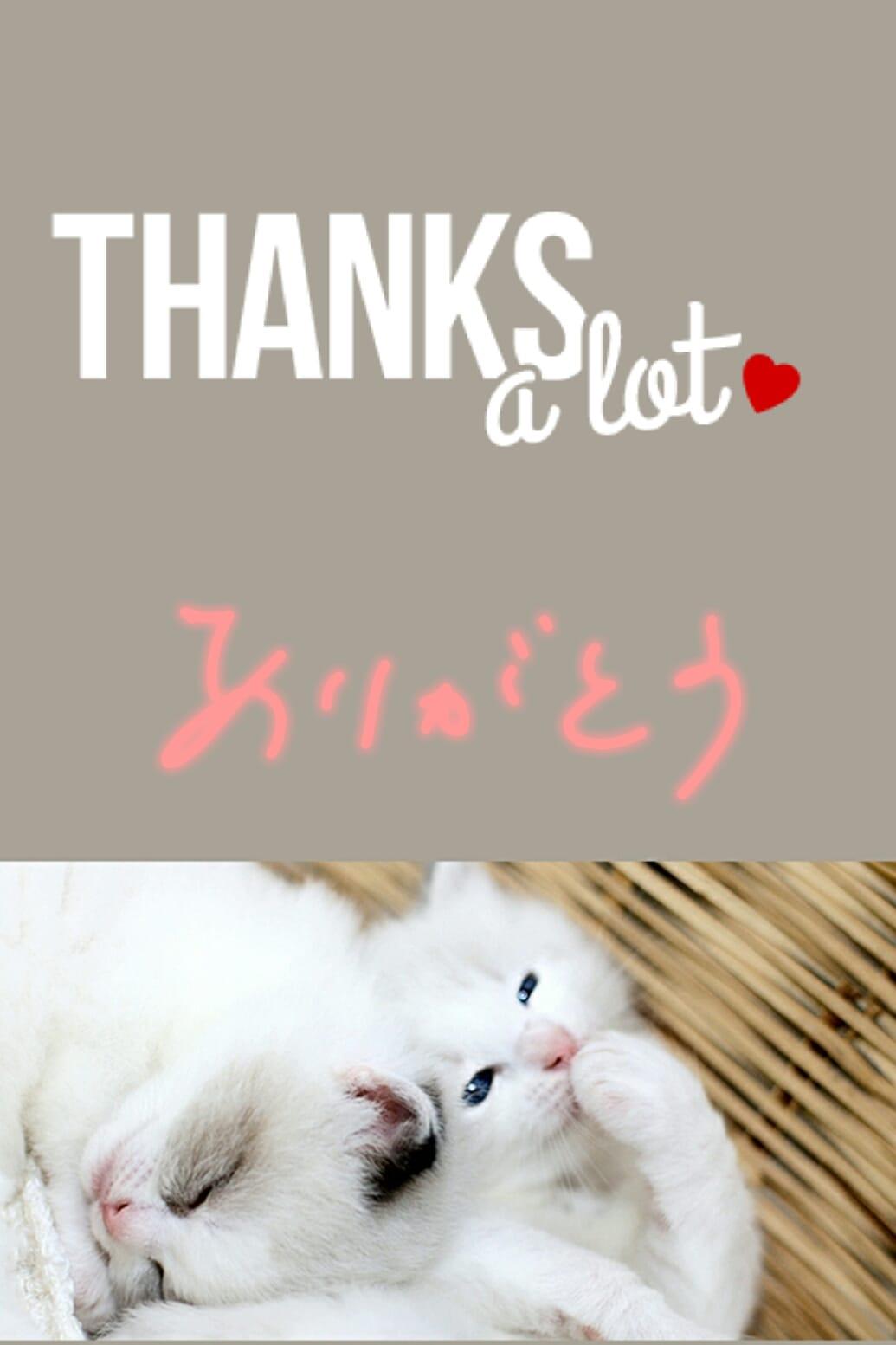 「ありがとうございます」11/05(11/05) 22:06 | ふぃなんしぇの写メ・風俗動画