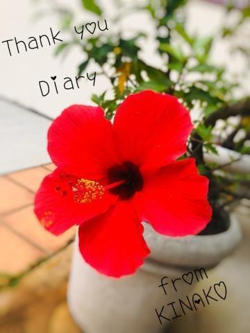 きなこ|広島市内デリヘルの最新写メ日記