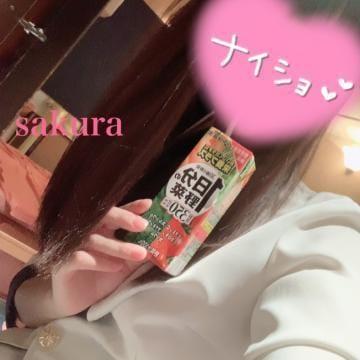 さくら【美乳】|札幌・すすきのソープの最新写メ日記